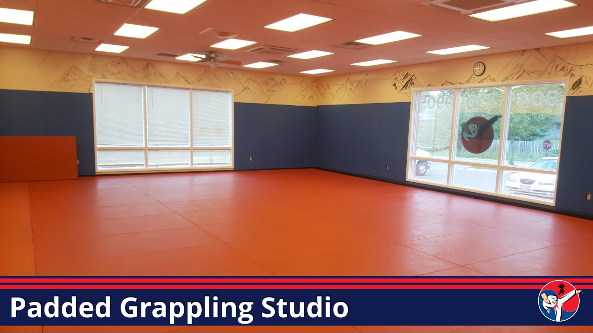Padded Grappling Martial Arts Studio