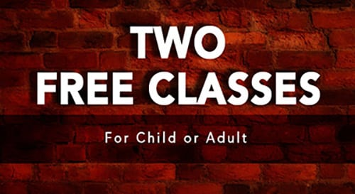 Two Free Martial Arts Classes